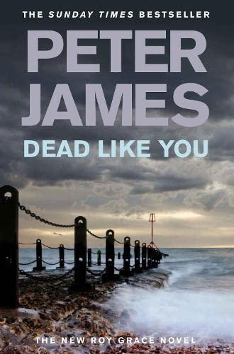 Dead Like You,Peter James
